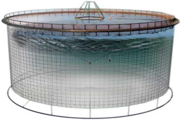 تجهیزات پرورش ماهی در قفس